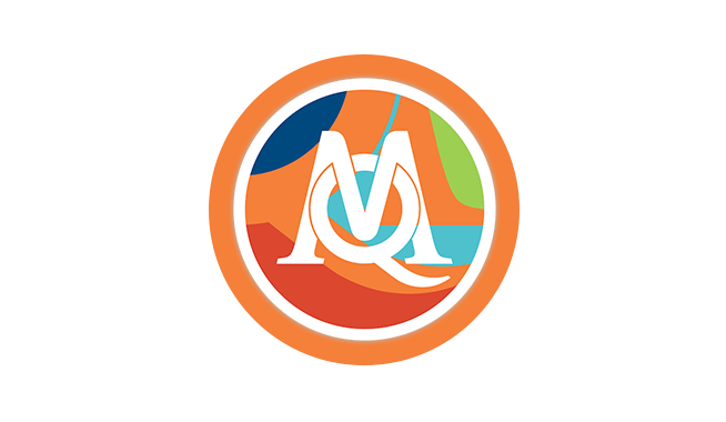 MAXQDA Plus